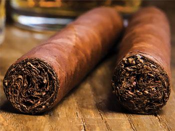 grand robusto cigar